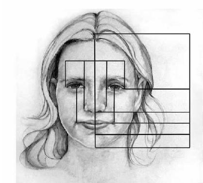 Retrouvez ici les proportions du visage et du corps humain